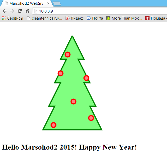 New Year Tree in Marsohod2 board